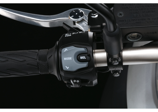 V-Strom 1000 ABS Left control switch